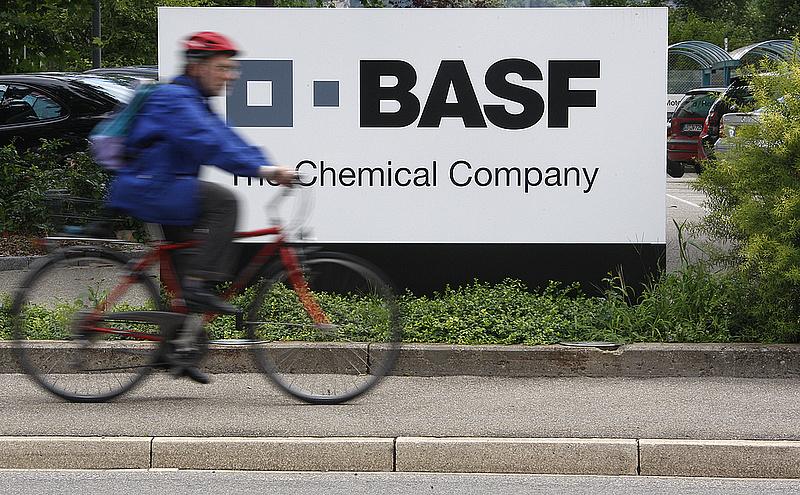 Hatezer munkahelyet szüntet meg a BASF