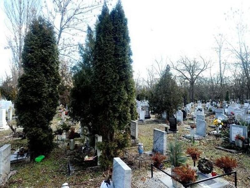 Jelentősen drágulhat a temetkezés Budapesten