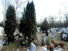 Tizennyolc éves csúcson a halálozás - Magyarország 2017