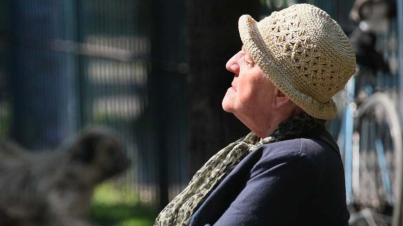 Nyugdíjasok: fontos számok a jogosultakról