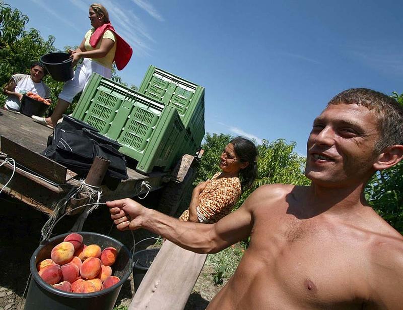 Büntessük-e a munkanélküli romákat?