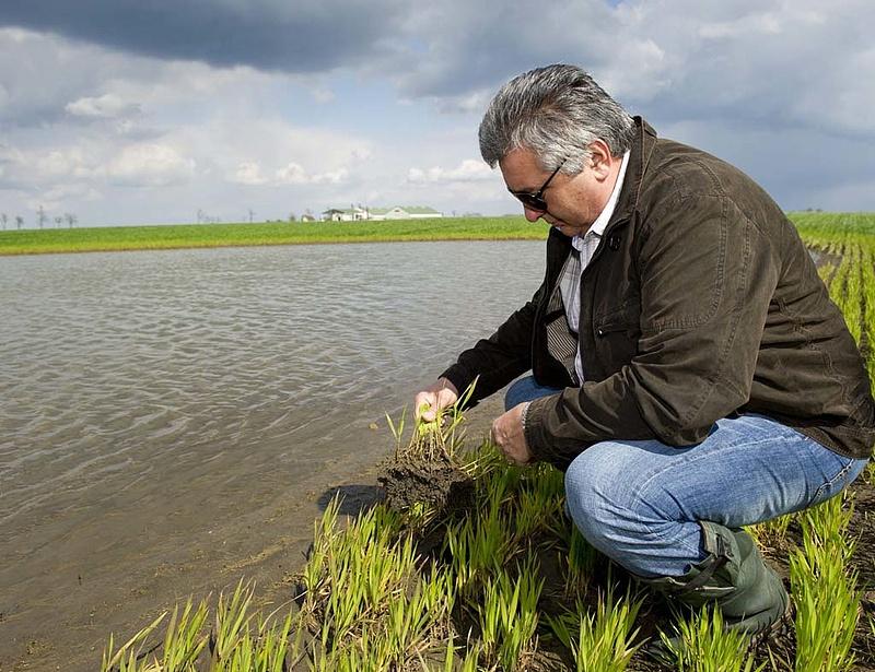 Újabb ügyeknél segítenek a falugazdászok