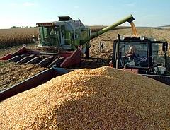 Az év üzlete a mezőgazdasági gépgyártásban