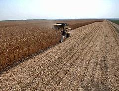 Kiderült: ez vár az európai mezőgazdaságra