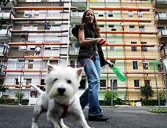 Kutyatápokat ellenőrzött a hatóság - mutatjuk a részletes eredményeket!