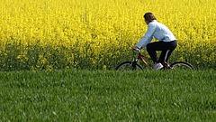A Budapest-Balaton kerékpárút 9 milliárdért épülhet
