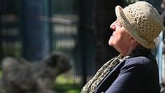 Fordulat nyugdíjügyben