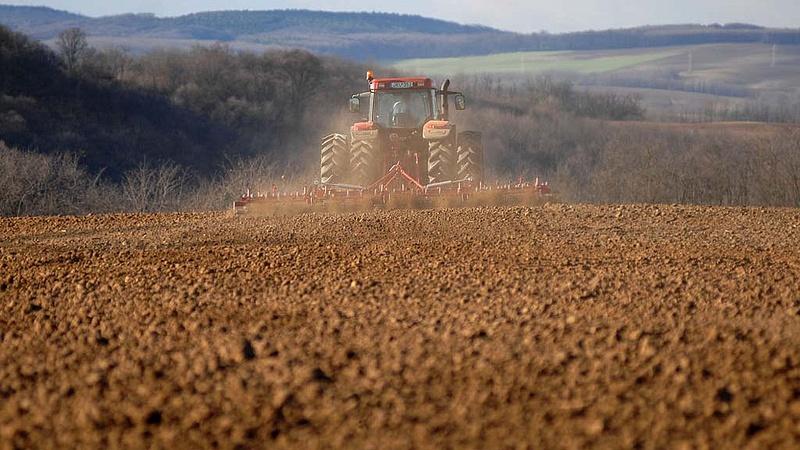 Nagyot javított a magyar mezőgazdaság