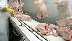 Szereti a csirkehúst? Ennek nem fog örülni