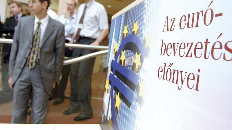 Magyar euró: váratlan eredmény született