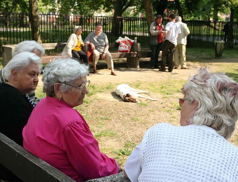 Nyugdíjügyek: tárgyalnak a közszféra kötelező korhatáráról