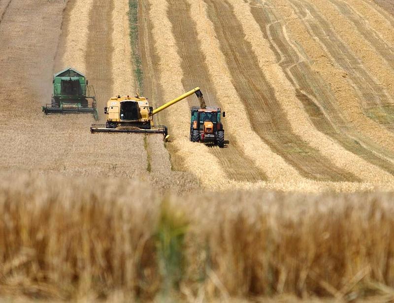Az állam visszaveszi a földeket a nagygazdaságok utódcégeitől