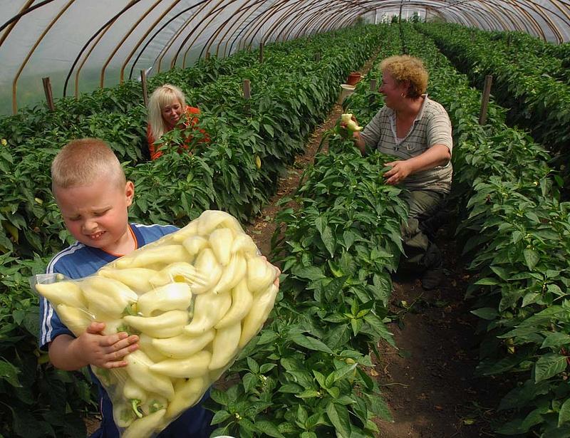 Nagy változások jönnek a mezőgazdaságban