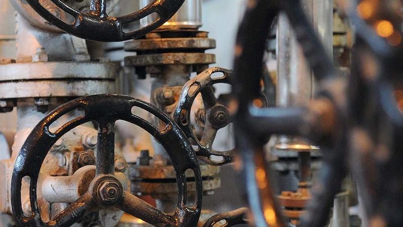 Biomassza fűtőmű épül Kaposváron
