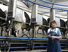 Itt a rossz hír: tovább drágulhat a tej