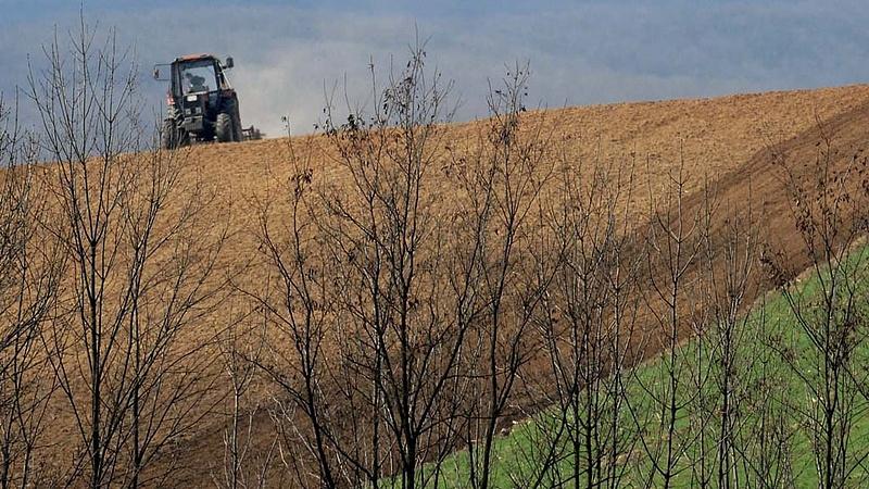 Ilyen éve volt a magyar mezőgazdaságnak tavaly