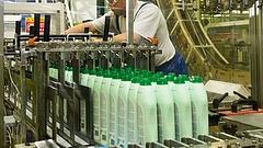 Annyi Domestost vesznek, hogy bővíteni kell a magyar gyárat
