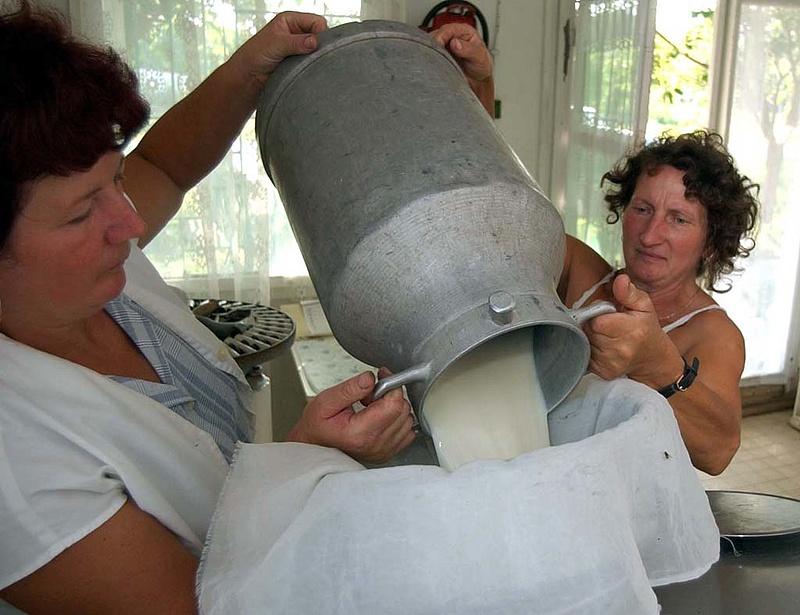 Ellenőrizték a tejágazatot - ezt találta a Nébih