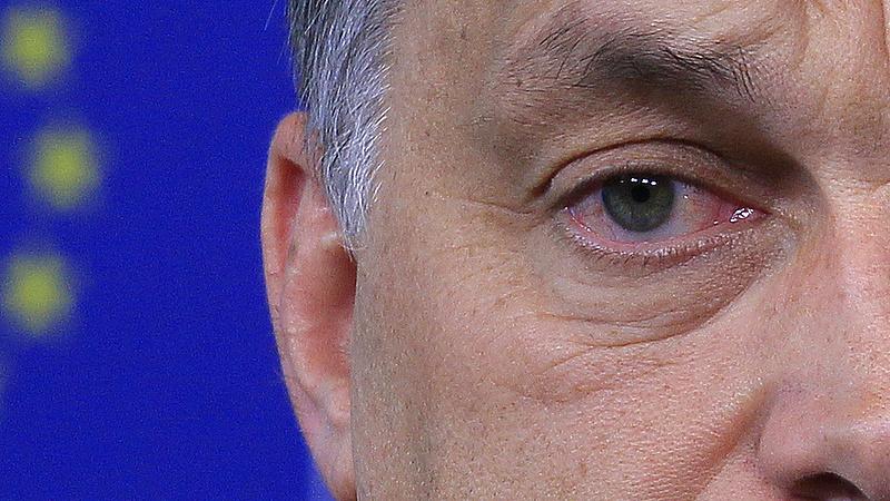 Orbán Viktor örül - zsebében a választások