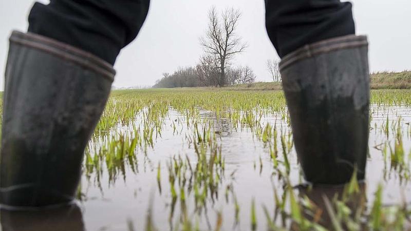 Komoly belvízvédelmi beruházás indul