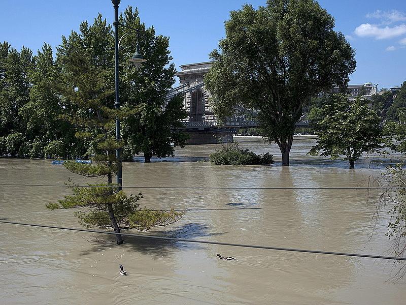 Rekordon a Duna vízszintje Budapesten