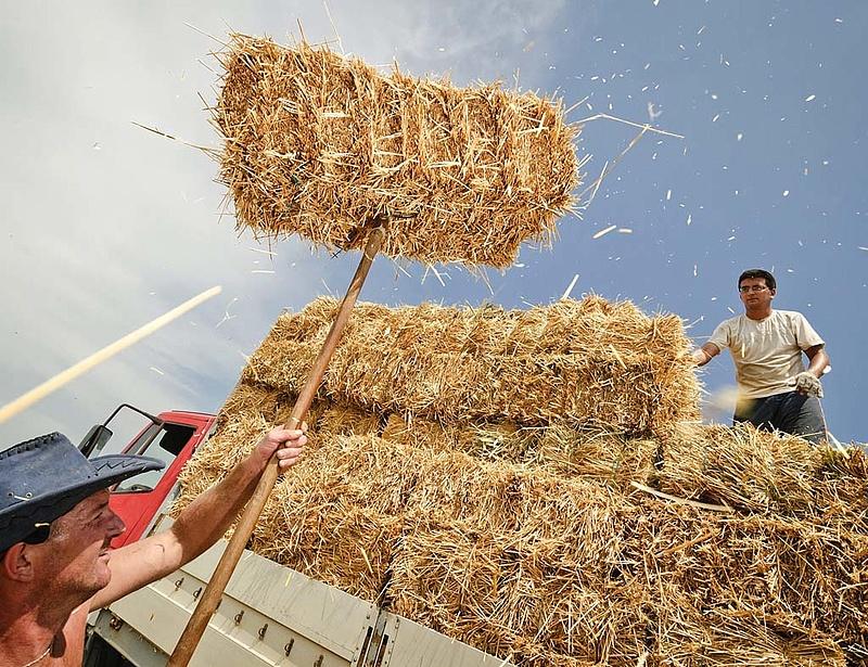 Elkészült az uniós forrásokra épülő magyar agrárstratégia