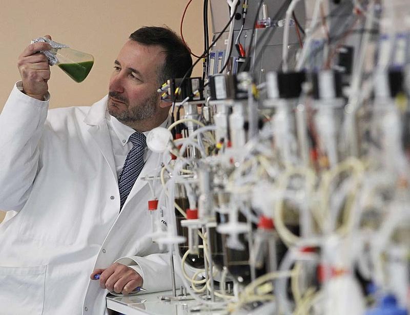 Új gyógyszereket fejlesztenek Gödöllőn