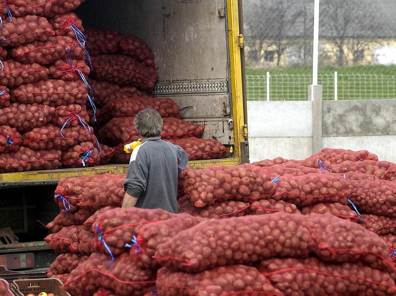 Tovább csökkentek a mezőgazdasági termelői árak áprilisban
