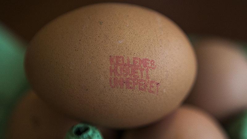 Kevés a tojás a boltokban