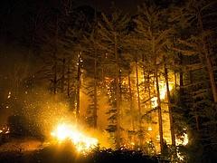 Erdőtűz pusztít Spanyolországban