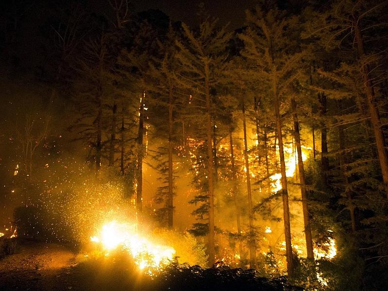 Óriási erdőtüzek pusztítanak az Egyesült Államok délnyugati partvidékén és Kanadában