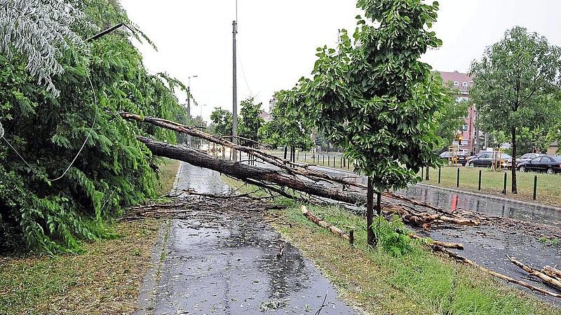 Júliusi viharok: elképesztő számú kárbejelentés érkezett