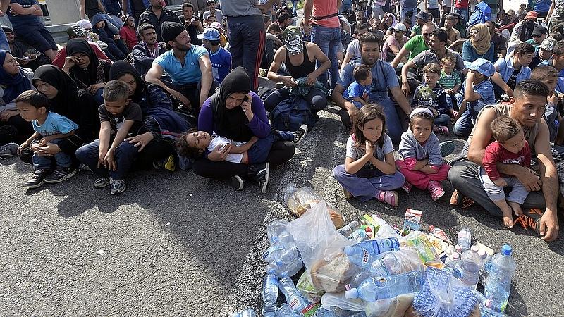 Puhul a lengyel kormány - szírek befogadására készülnek