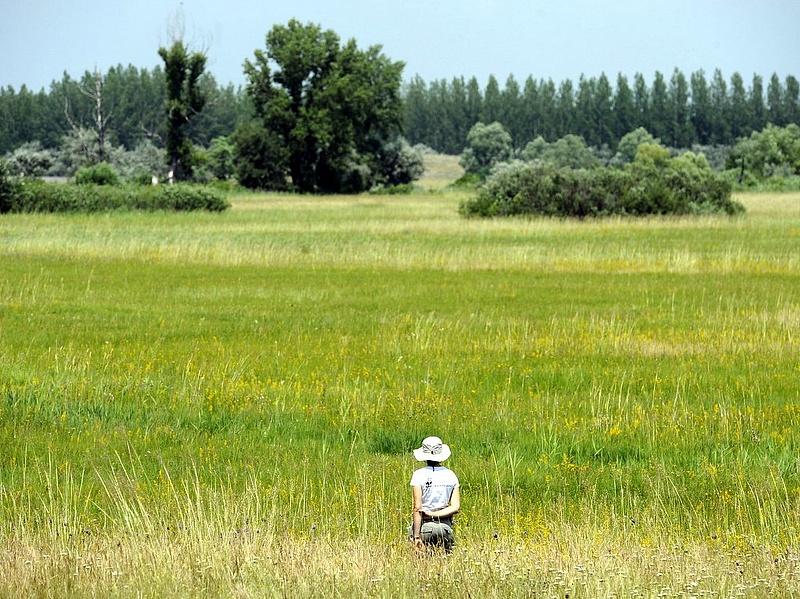 Hatvanmilliárdot költ a kormány természetvédelemre - innen jön a pénz