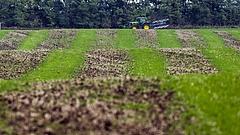 Osztatlan közös földtulajdon: itt az új szabályozás