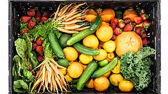 Az egészséges élelmiszerek népszerűsítésére kap pénzt Magyarország is