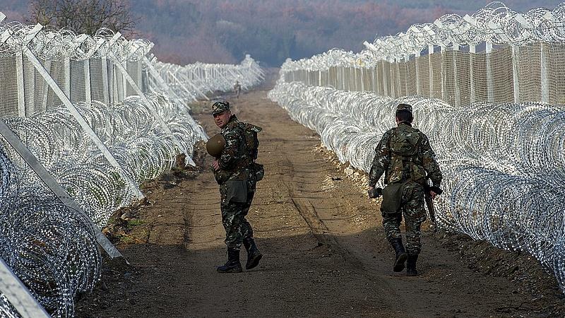 Halott ügyről szavaznak a magyarok ősszel (FT)