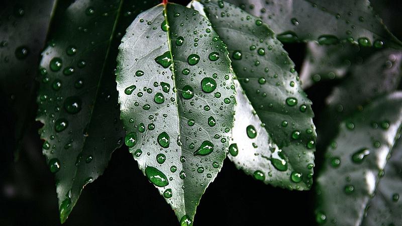 Meddig marad az esős idő?