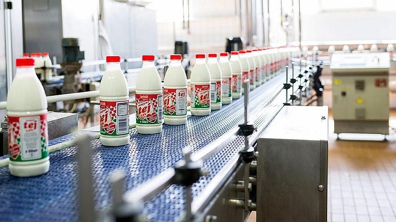 Rekordtámogatást ad a kormány a tejeseknek