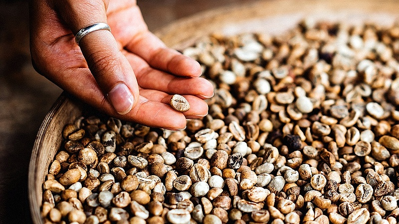 Megugrott a kávéexport a világban