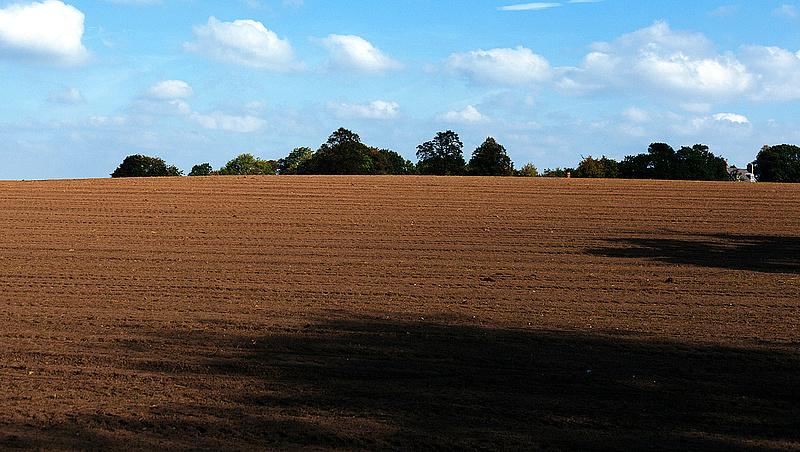 Döntöttek: vége az osztatlan közös földtulajdonnak