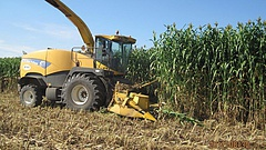 Jó termésre van kilátás az agrártárca szerint
