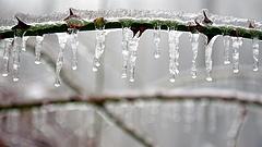 Durva volt a január, ilyen lehet a tavasz - itt az OMSZ magyarázata