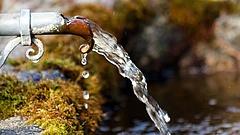 Nagy a baj a Balatonnál - több százezer ember maradhat ivóvíz nélkül