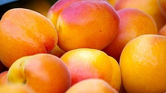 Végre jó hír: bőven terem a magyarok kedvenc gyümölcséből