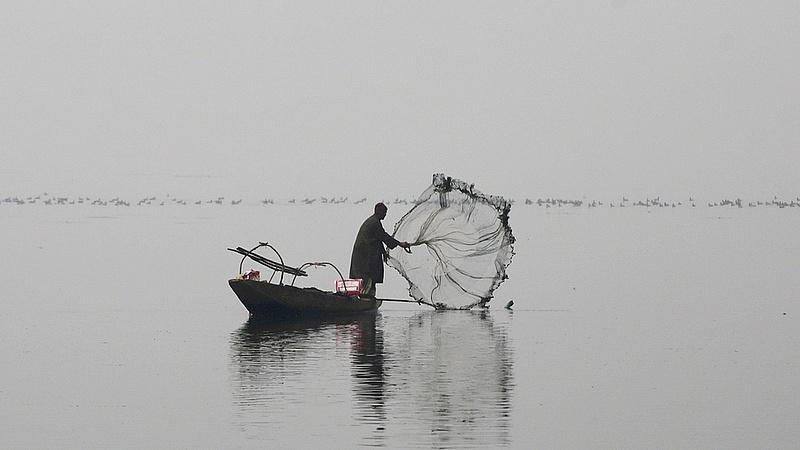Újra jó magyar halásznak lenni