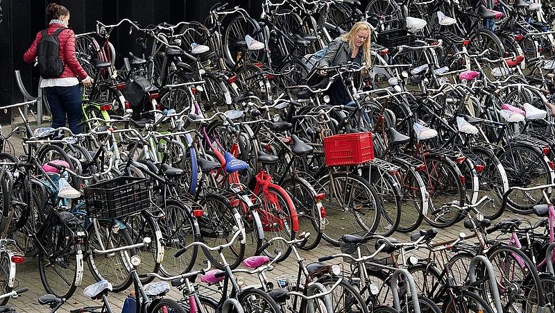 Betiltják a mobiltelefon kerékpározás közbeni használatát Hollandiában