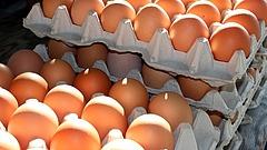 A tojás csak a kezdet a kíméletlen élelmiszer-drágulásban