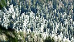 Óriási fordulat az időjárásban - jöhet a hó