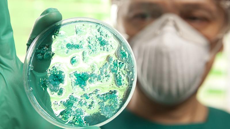 Kórházi fertőzések: nagyon nem mindegy, hogy hol gyógyul